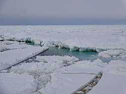 Ross Sea, Summer 2016 25.jpg
