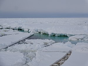 Ross Sea - Sea ice in the Ross Sea
