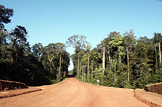 Route nationale 2 (French Guiana)