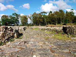 History of Póvoa de Varzim - Preserved Decumanus street. The first granite buildings appeared in the 5th century B.C. The city developed with new technology and trade brought in by the Mediterranean cultures.