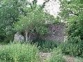 Ruined building, West Horrington - geograph.org.uk - 187343.jpg