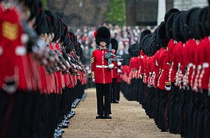 Non-commissioned officer - A sergeant of the Coldstream Guards addressing through the ranks during the rehearsal for the Trooping the Colour ceremony