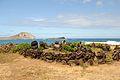 Sacred Stones near Sea Life Park (4573662953).jpg