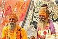 Sadhus in Rajasthan.jpg