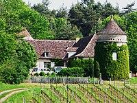 Saint-Sauveur les Bourdiés (7).JPG