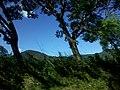 Salcoatitán, El Salvador - panoramio (17).jpg