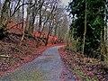 Sandweiler, réserve naturelle Birelergronn (102).jpg