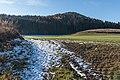 Sankt Georgen am Laengsee Sankt Sebastian Felder und Waelder 02122015 9347.jpg