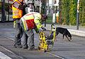 Schienenschleifer der Freiburger Verkehrs AG bei der Arbeit.jpg