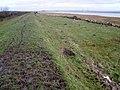 Sea defences, Severn Estuary, near Rogiet - geograph.org.uk - 1078405.jpg