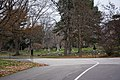 Section 6 - Lake View Cemetery - 2014-11-26 (17470937878).jpg