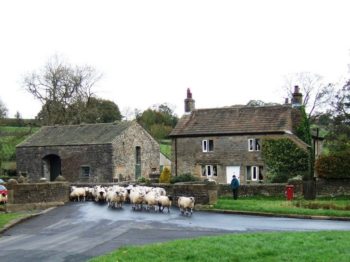 Sheep on the move - geograph.org.uk - 1028036.jpg