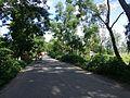 Sherpur Upazila, Bangladesh - panoramio (27).jpg