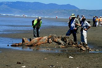 Ocean Beach, San Francisco - The shipwreck of the King Philip in May 2007