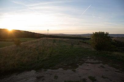 Siegendorfer Pußta und Heide CF9A1786.jpg