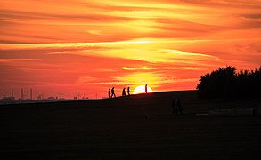 Silhouettes in sunset (explored 2016-08-18) - Flickr - Maria Eklind.jpg