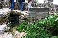 Sintras - 062 (3468302060).jpg