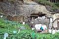 Skalická jeskyně.jpg