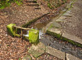 Sluice on Leat in Ivybridge.jpg