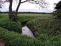 Small Brook - geograph.org.uk - 411524.jpg