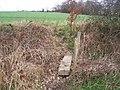 Small footbridge - geograph.org.uk - 1209506.jpg