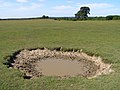 Small pond on Wilverley Plain, New Forest - geograph.org.uk - 191281.jpg