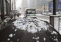 Snow Storm- January 21, 2014 (12074019525).jpg