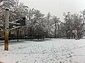 Snowy Basket Ball Court in Shar-i-Naw (5473544482).jpg