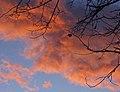 Solnedgang 2 (1618550437).jpg