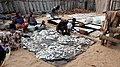 Sorting fish in Avloh, Grand-Popo, Benin.jpg