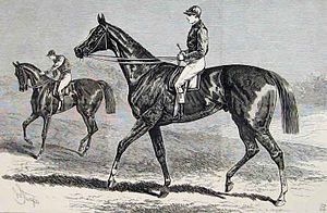 St. Blaise (horse) - St. Blaise, depicted in the Illustrated London News