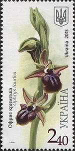 Stamps of Ukraine, 2015-53.jpg