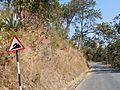 Steep road ahead.jpg