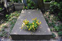 Stefan Zeromski grave.JPG