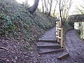 Steps up from canal, New Inn - geograph.org.uk - 1762539.jpg