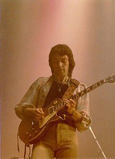 Steve Hackett English musician