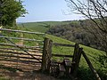 Stile on footpath near Kingston (2) - geograph.org.uk - 1270201.jpg
