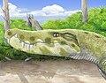 Stratiotosuchus maxhechti.jpg