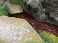 Stream running red with iron oxide that has seeped from the moor - geograph.org.uk - 942435.jpg