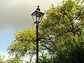 Street lamp and apple trees, Berry Pomeroy - geograph.org.uk - 915527.jpg