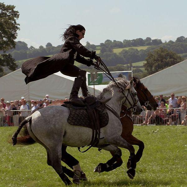 Writing Horses - Philippa Jane Norman - Author