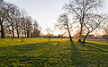 Sunset at Ruskin Park (13045567093).jpg