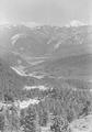 Talblick von unterhalb der Ofenpasshöhe mit dem Ortler im Hintergrund - CH-BAR - 3239913.tif