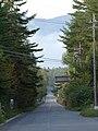 Tamagawa, Chino, Nagano Prefecture 391-0011, Japan - panoramio (1).jpg