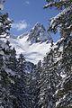 Tannenboden-Seebenalp Winter hiking trail - panoramio - Patrick Nouhailler's… (33).jpg