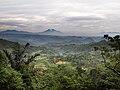 Tasikmalaya Regency hilly view.jpg