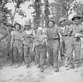 The British Army in Italy 1944 NA14766.jpg