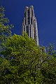 The Cathedral of Learning (8918413258).jpg