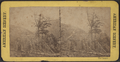 The Catskill, from Robert N. Dennis collection of stereoscopic views 2.png