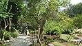 The Japanese garden, Jarków (32138202735).jpg
